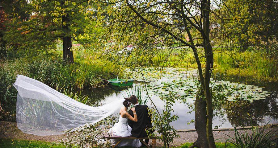 Ogród botaniczny Kraków sesja ślubna